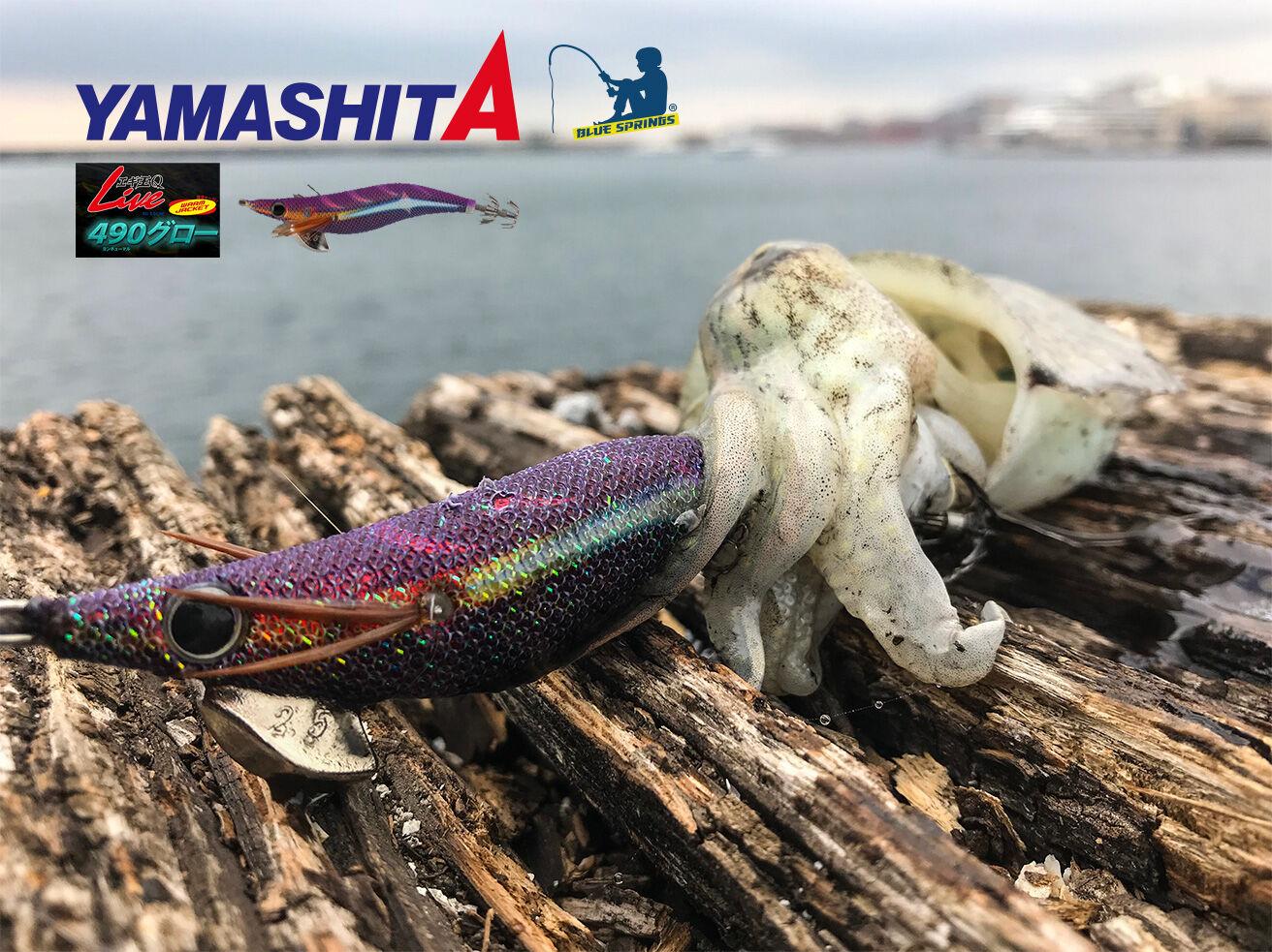 yamashita live 490