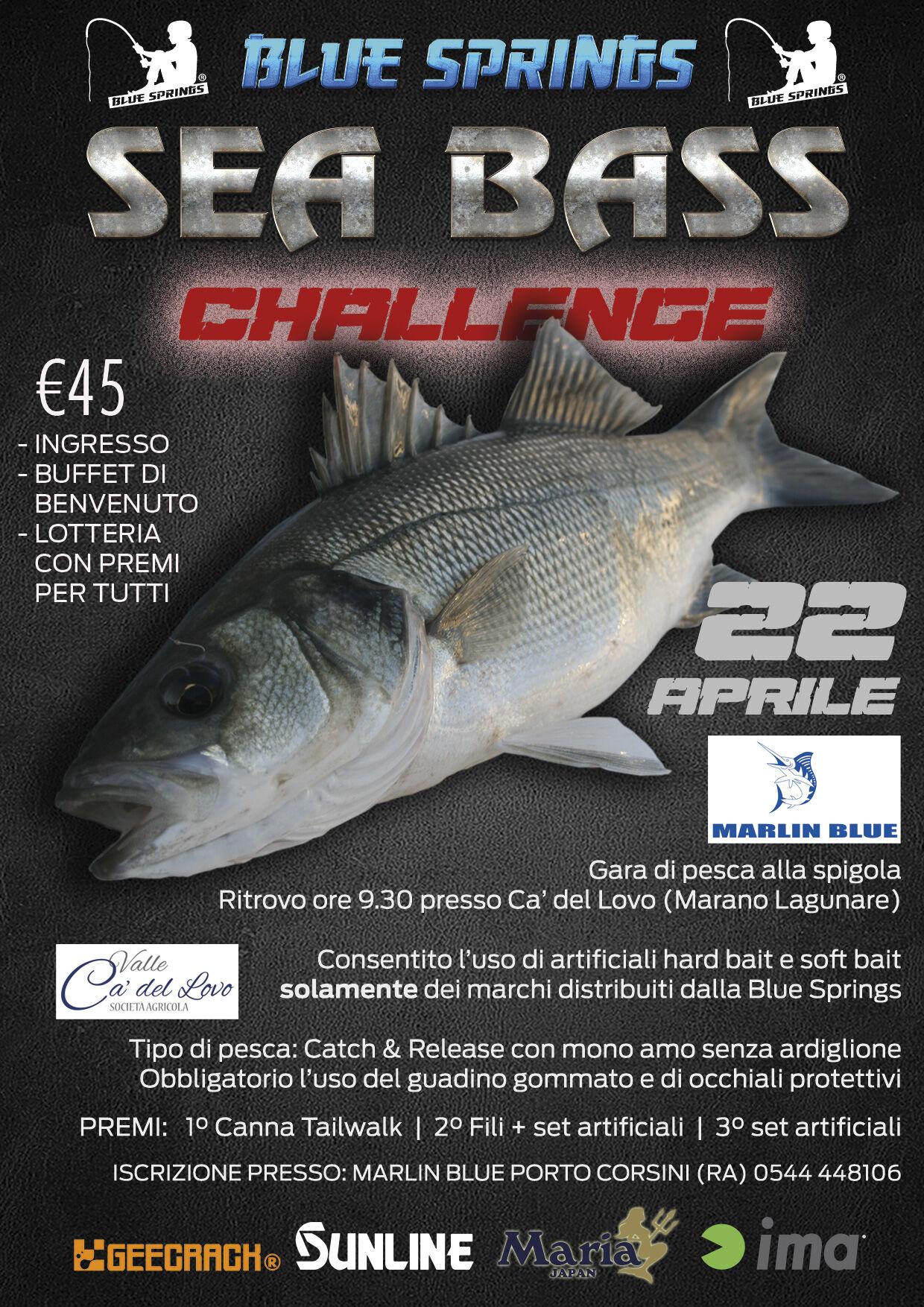 SEA bass challenge