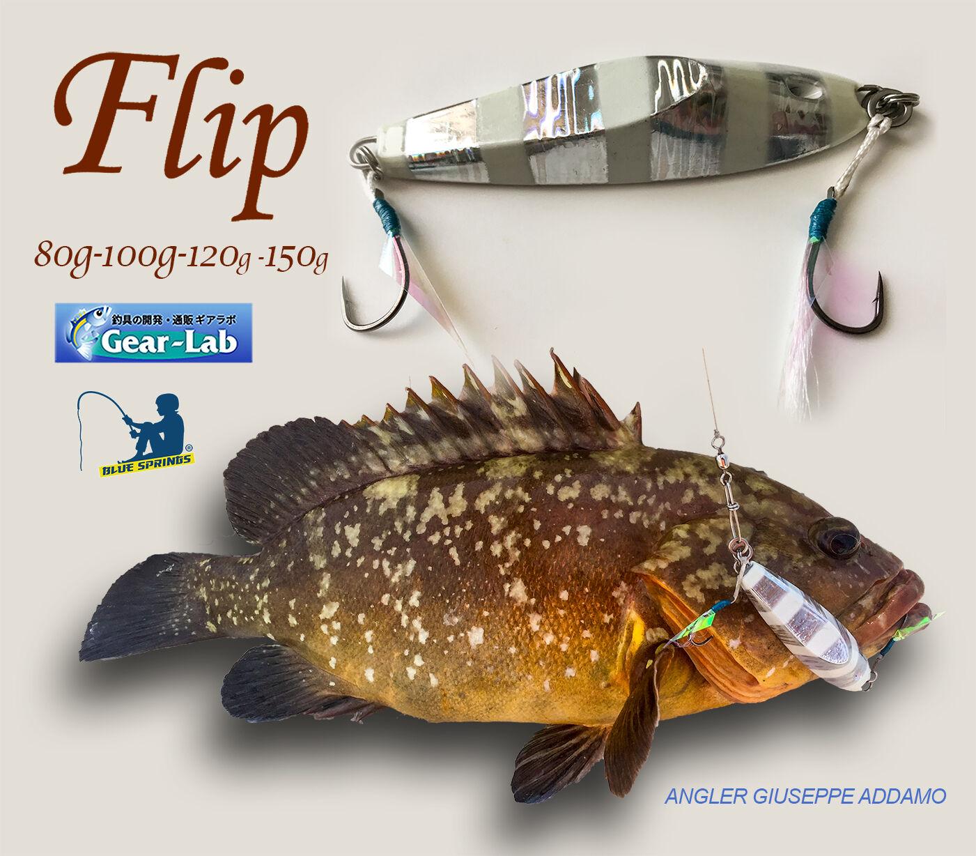 Flip Gear-Lab