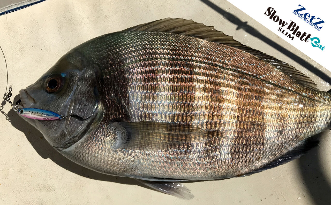Storie di pesca - Slow Blatt Cast Slim