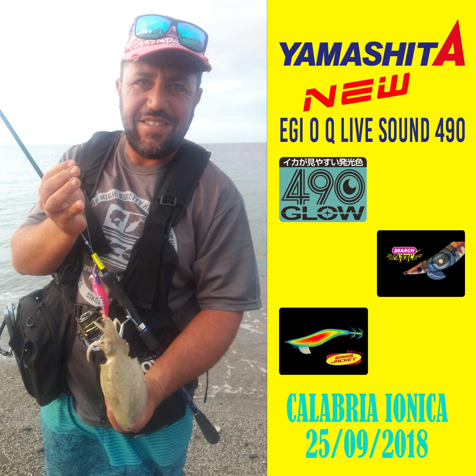 Yamashita Egi sound 490